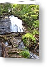 Anna Ruby Falls - Georgia - 4 Greeting Card