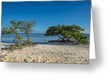 Annes Beach Greeting Card