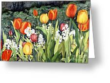 Ann's Tulips Greeting Card