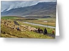 Annual Autumn Sheep Roundup Greeting Card