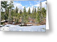 Another Winter Passes In The Yosemite High Country Greeting Card
