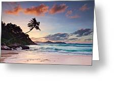 Anse Severe Greeting Card