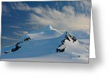 Antarctic Landscape Greeting Card
