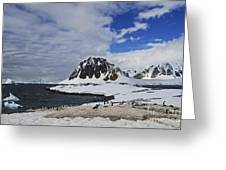 Antarctic Wilderness... Greeting Card