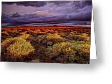 Antelope Valley Greeting Card