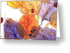Anticipating Autumn Greeting Card