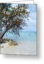Antigua Greeting Card