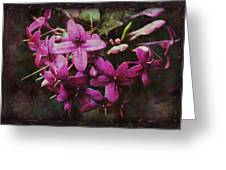 Antique Floral  Greeting Card