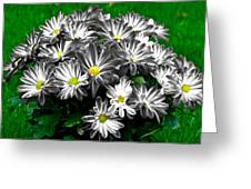Antique Flowers Greeting Card