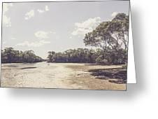 Antique Mangrove Landscape Greeting Card