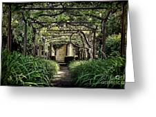 Antique Pergola Arbor Greeting Card