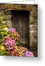 Antique Wooden Door And Hortensia Greeting Card