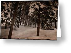 Antique Woodscape Greeting Card