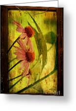 Antiqued Cone Flowers Greeting Card