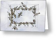 Ants Eye View Of A Bird Feeder Greeting Card