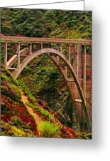 Anyone Seen The Bridge Greeting Card by Sharon Costa