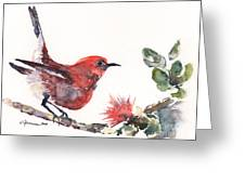 Apapane - Native Hawaiian Bird Greeting Card