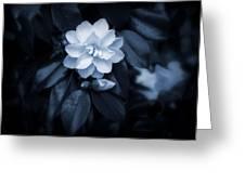 Moonlight Maiden Greeting Card