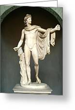 Apollo Belvedere Greeting Card