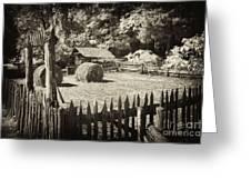 Appalachian Barnyard Greeting Card