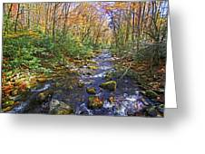 Appalachian Highlands Greeting Card