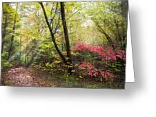 Appalachian Mountain Trail Greeting Card