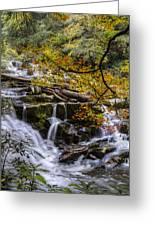 Appalachian Mountain Waterfall Greeting Card