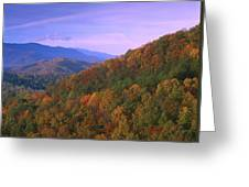 Appalachian Mountains Ablaze  Greeting Card