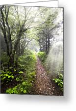 Appalachian Trail Greeting Card by Debra and Dave Vanderlaan