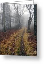 Appalachian Trail Fog Greeting Card