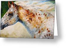 Appaloosa Spirit 3618 Greeting Card