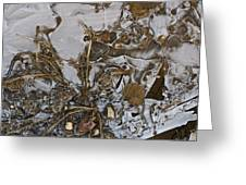 Apparitions On Ice Greeting Card