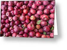Apple Background Greeting Card