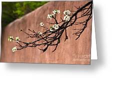 Apple Blossom Branch Greeting Card
