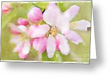 Apple Blossom Watercolour Greeting Card