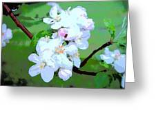 Apple Blossoms In The Spring - Painting Like Greeting Card