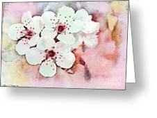 Apple Blossoms Pink - Digital Paint Greeting Card