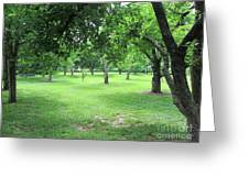 Apple Orchard - Kean University Greeting Card