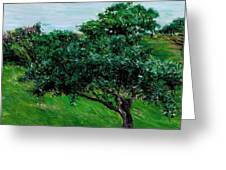 Apple Trees By The Sea Trouville Greeting Card