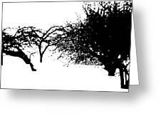 Apple Trees Greeting Card