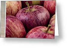 Apples 01 Greeting Card