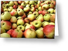 Apples Greeting Card by Olivier Le Queinec
