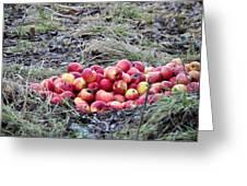 #apples Greeting Card