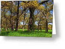 Appleton Farm Greeting Card