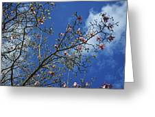 April Blossom Greeting Card