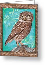 Aqua Barn Owl Greeting Card