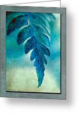 Aqua Fern Greeting Card