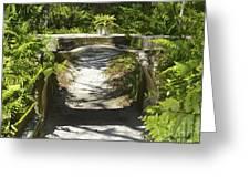 Aquaduct Greeting Card