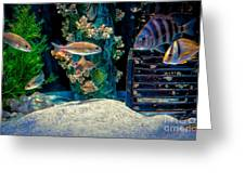 Aquarium Art Greeting Card