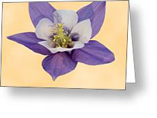 Aquilegia 'blue Star' Greeting Card